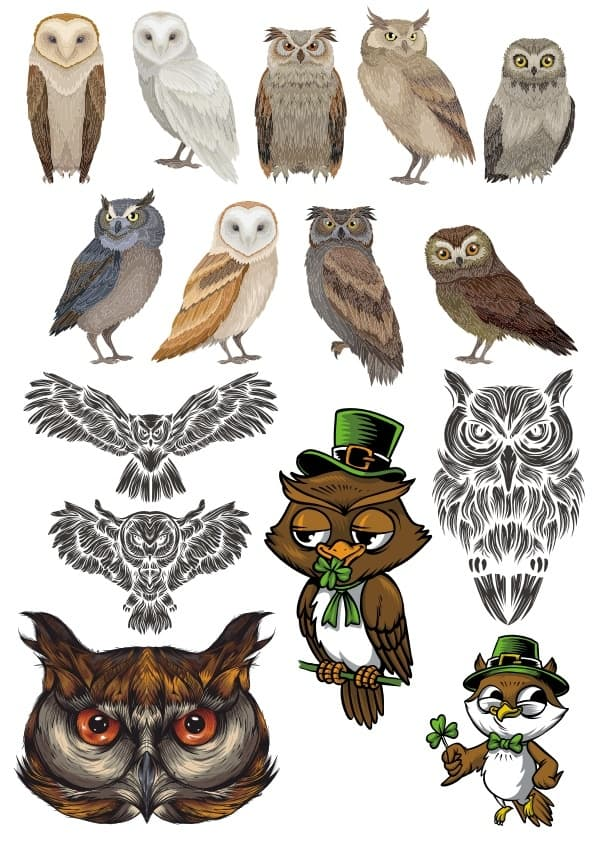 Owls Set (cdr)