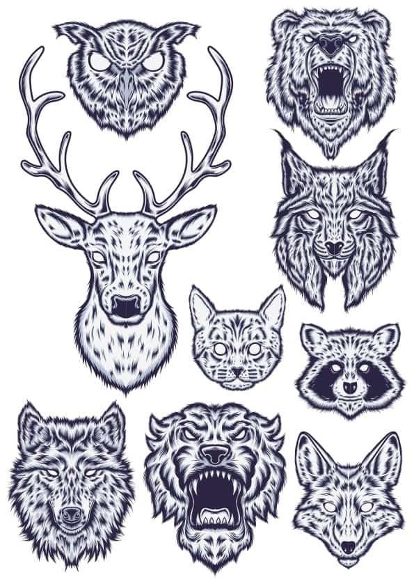 Animal Heads Illustration (cdr)