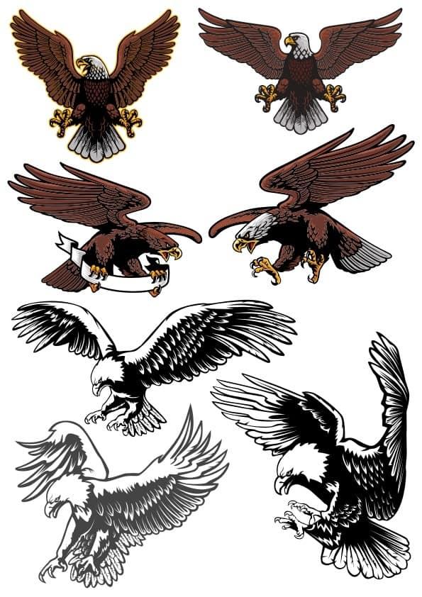 Eagles set 2 (cdr)