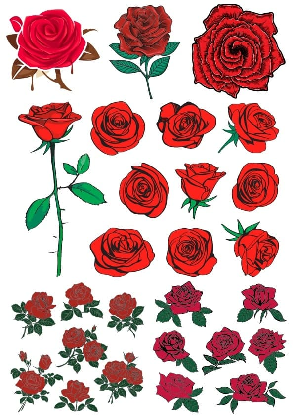 Roses (cdr)