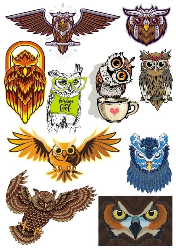 Owl set 2 (cdr)