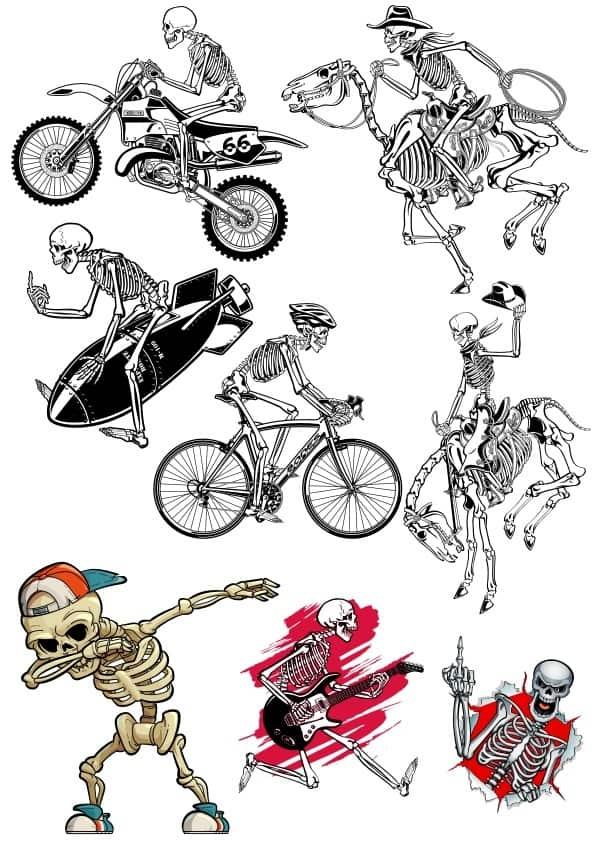 Skeleton set (cdr)