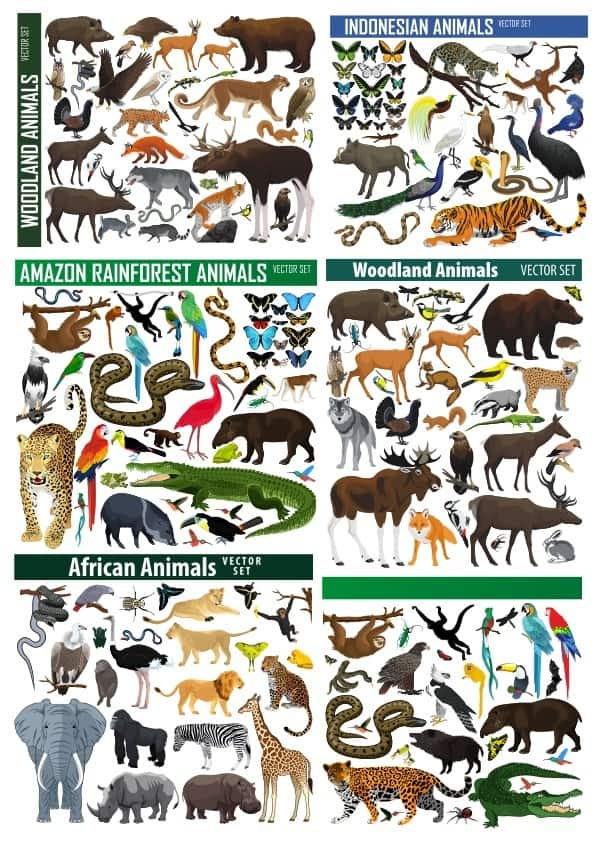 Animals pack (cdr)