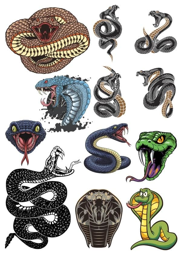 Snakes set (cdr)