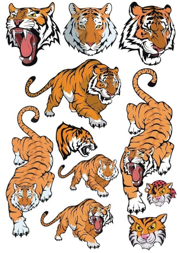 Tiger set 3 (cdr)