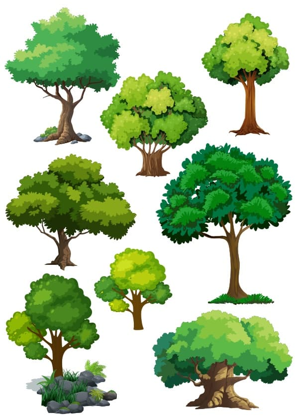 Trees set 3 (cdr)