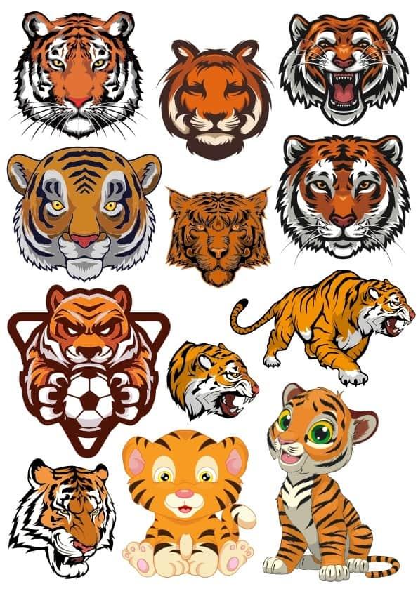 Tiger set 4 (cdr)
